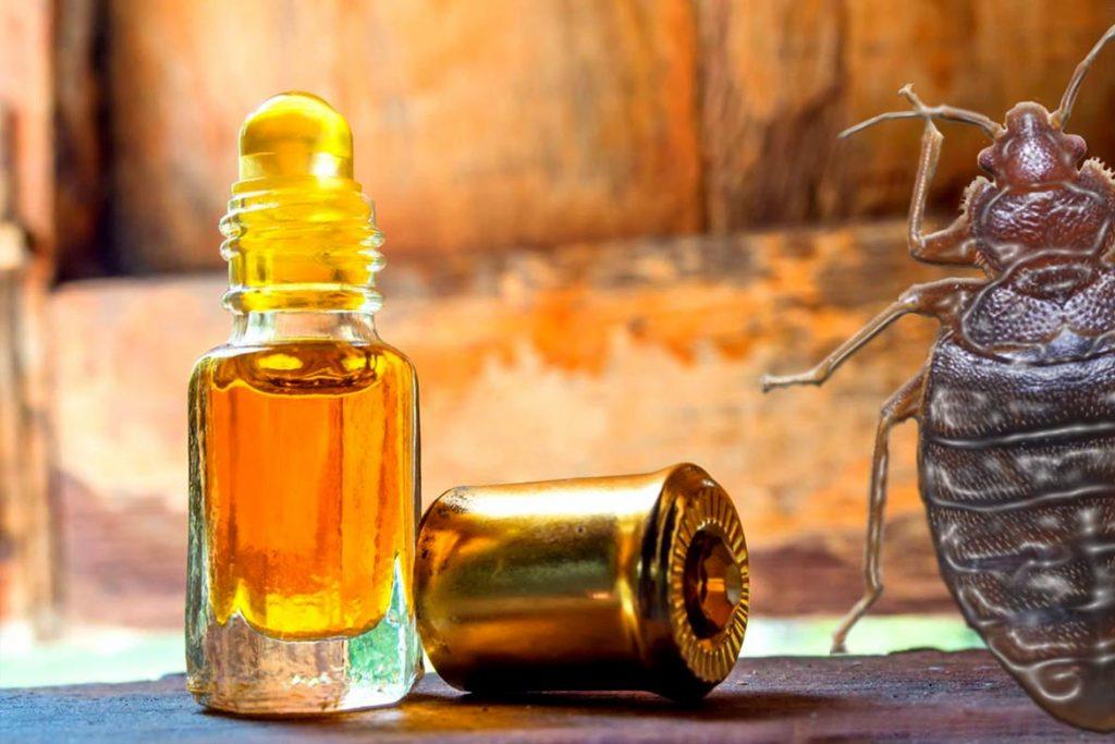 Эфирные масла от клопов в квартире камфорное масло