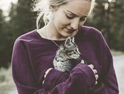 10 лучших способов как вытащить клеща у кошки в домашних условиях – советы ветеринара марина Давыдова