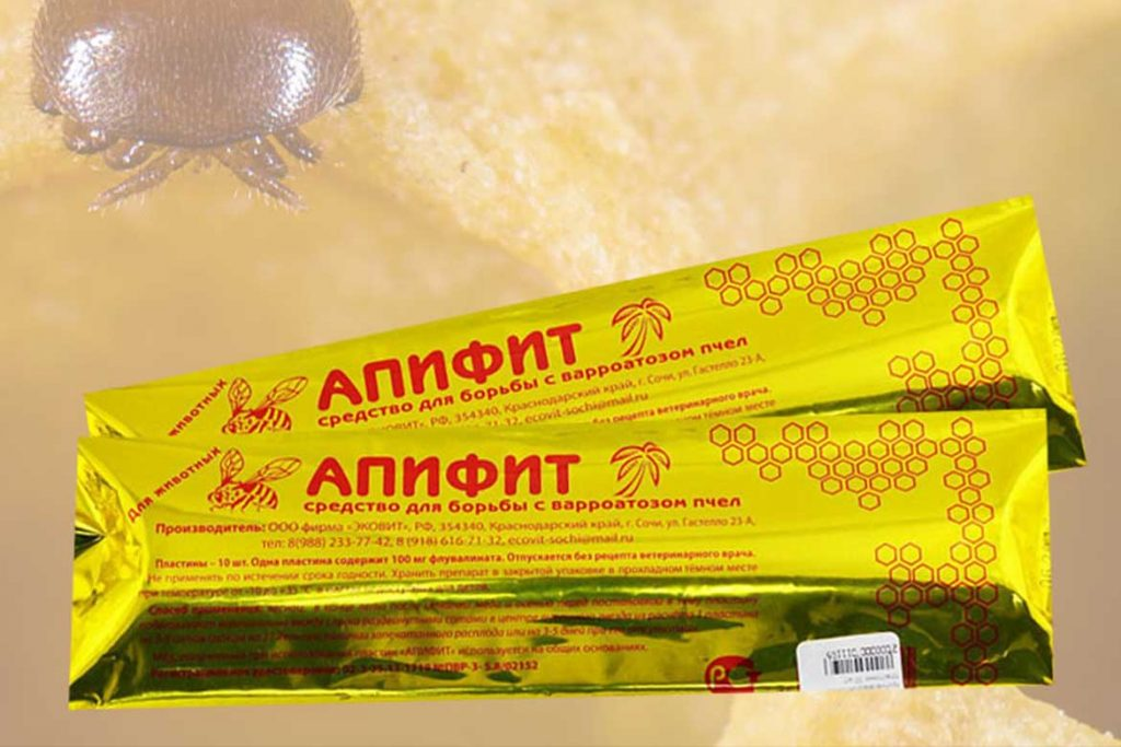 4 способа как лечить пчел от клеща Варроа Апифит