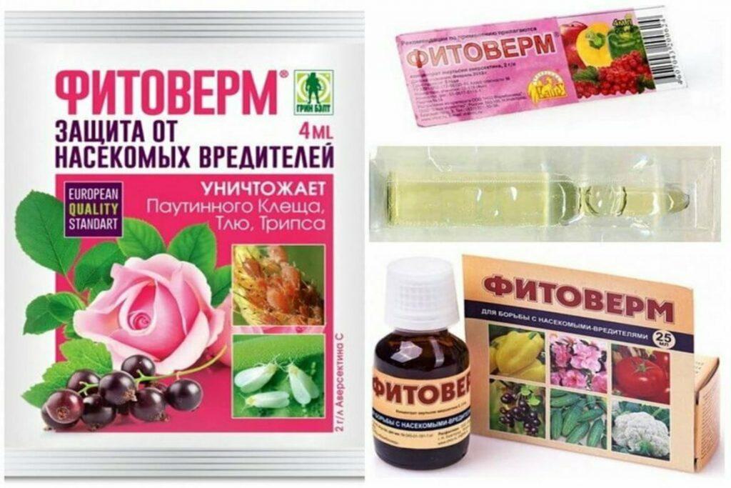 Фитоверм– средство от паутинного клеща фитоверим