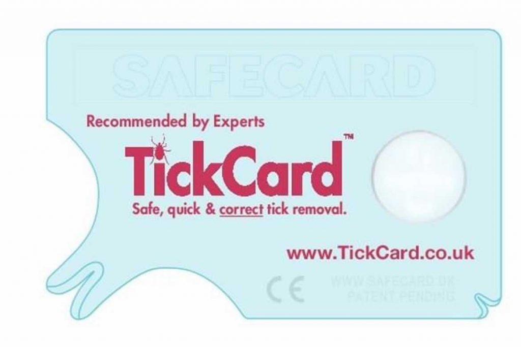ТОП 16 приспособлений для вытаскивания клеща выкручиватели пинцеты ручка-лассо щипцы крючки Teckminator (Tick Remover Card)