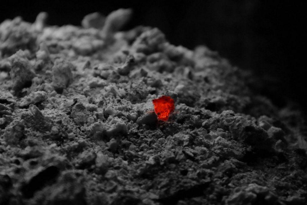 47 народных средств для людей, которых боятся клещи –пепел