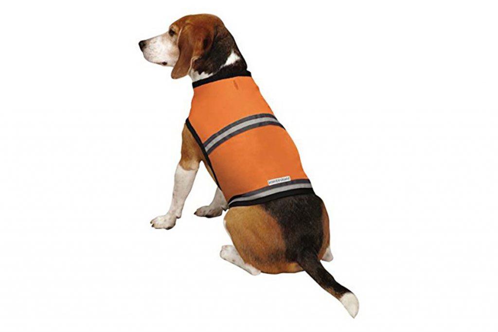 5 лучших способов, чем защитить (обработать) собаку от клещей жилетки, комбинезоны, банданы