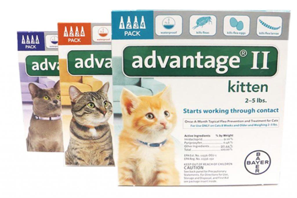 7 лучших капель на холку от клещей для кошек и котят Advantage