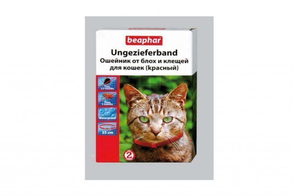 8 лучших ошейников от клещей для кошек и котят – отзывы Beaphar красны