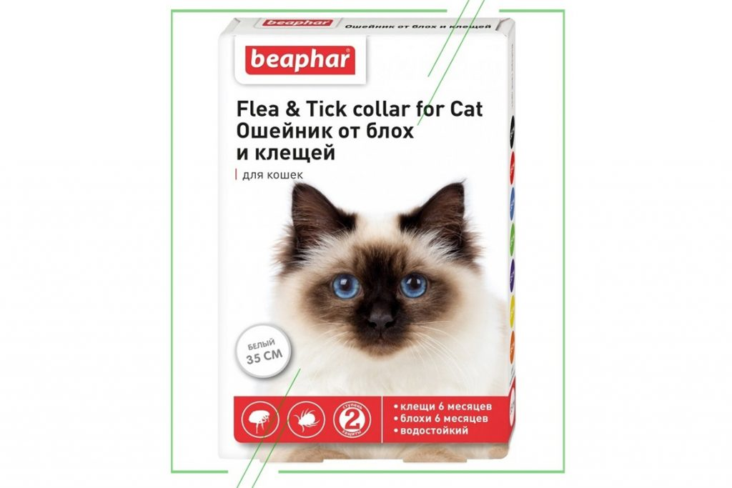 8 лучших ошейников от клещей для кошек и котят – отзывы Beaphar белый