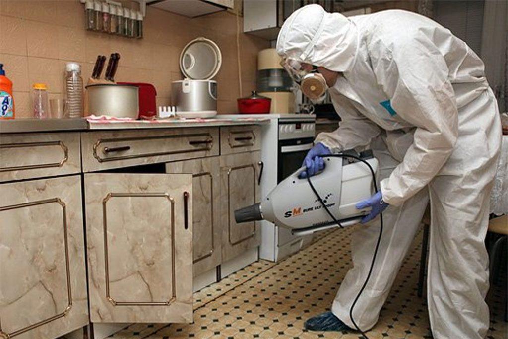 Цифокс – препарат для борьбы с клещами и кровососущими насекомыми - дезинфекция