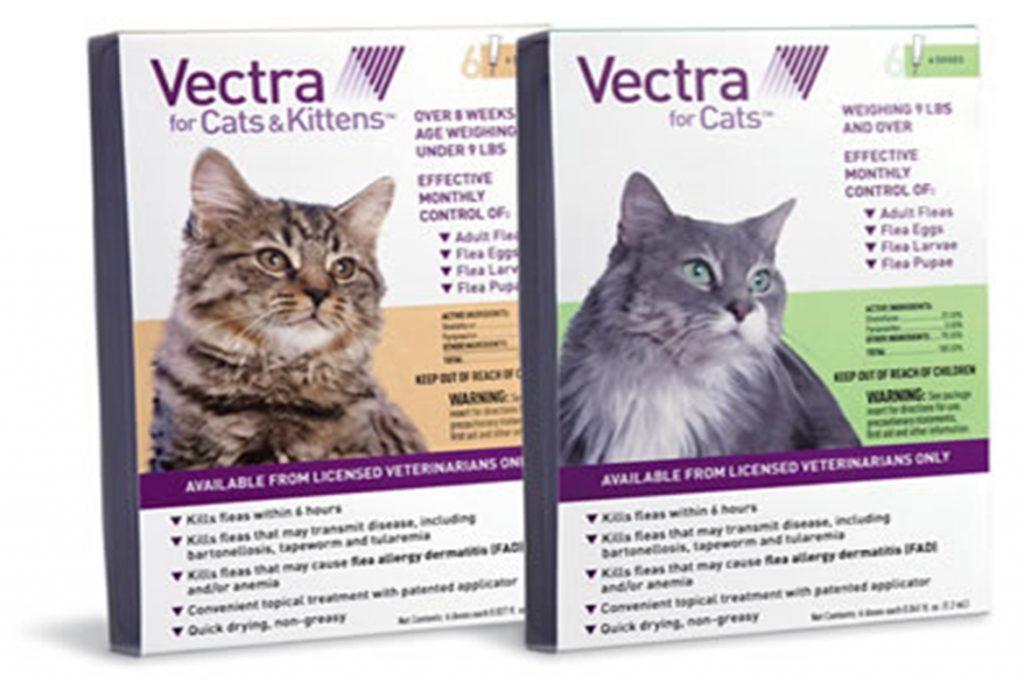 Инструкция и отзывы о каплях от клещей Вектра 3Д применение у кошек