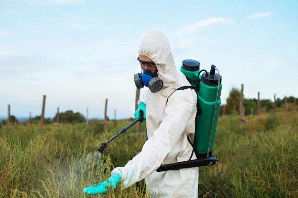 Как бороться с паутинным клещом на сое – профилактика