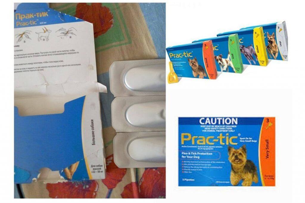 Практик капли для собак от клещей и блох – инструкция по применению, отзывы заводчиков и ветеринаров, оформление