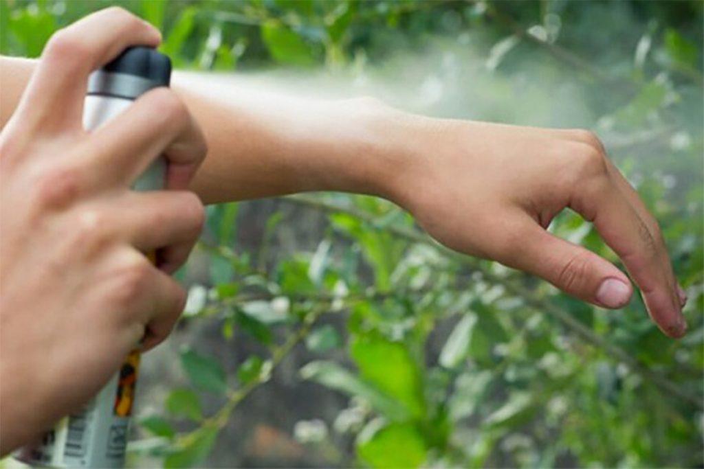 10 безопасных способов, как вытащить клеща из тела человека в домашних условиях, профилактика укусов