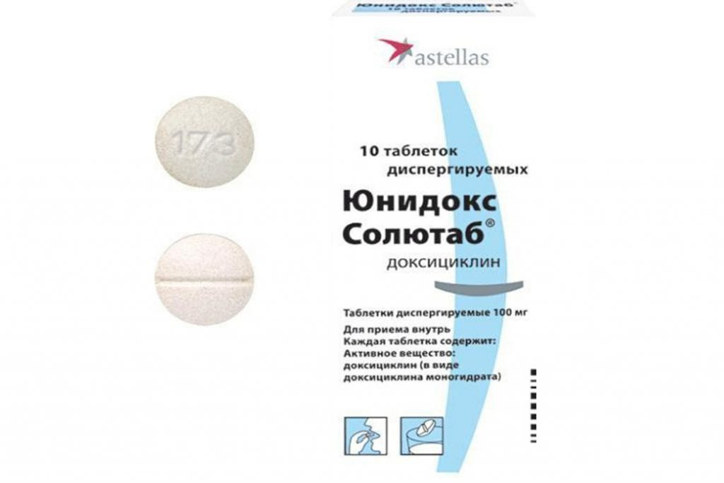 16 самых лучших антибиотиков и противовирусных средств, применяемых при укусе клеща – схема лечения, профилактика опасных заболеваний