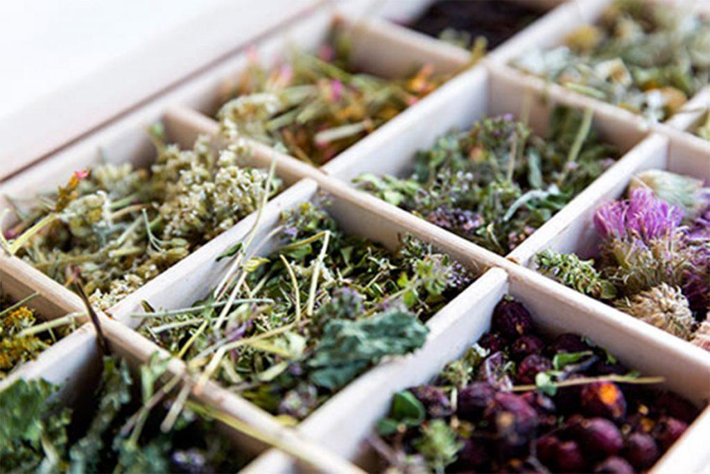 20 народных способов избавиться от демодекоза в домашних условиях, витаминный сбор