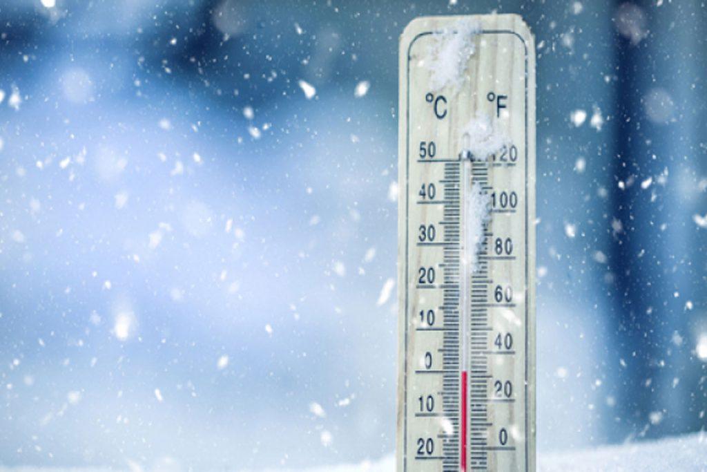 При какой температуре погибают вши и гниды - холод