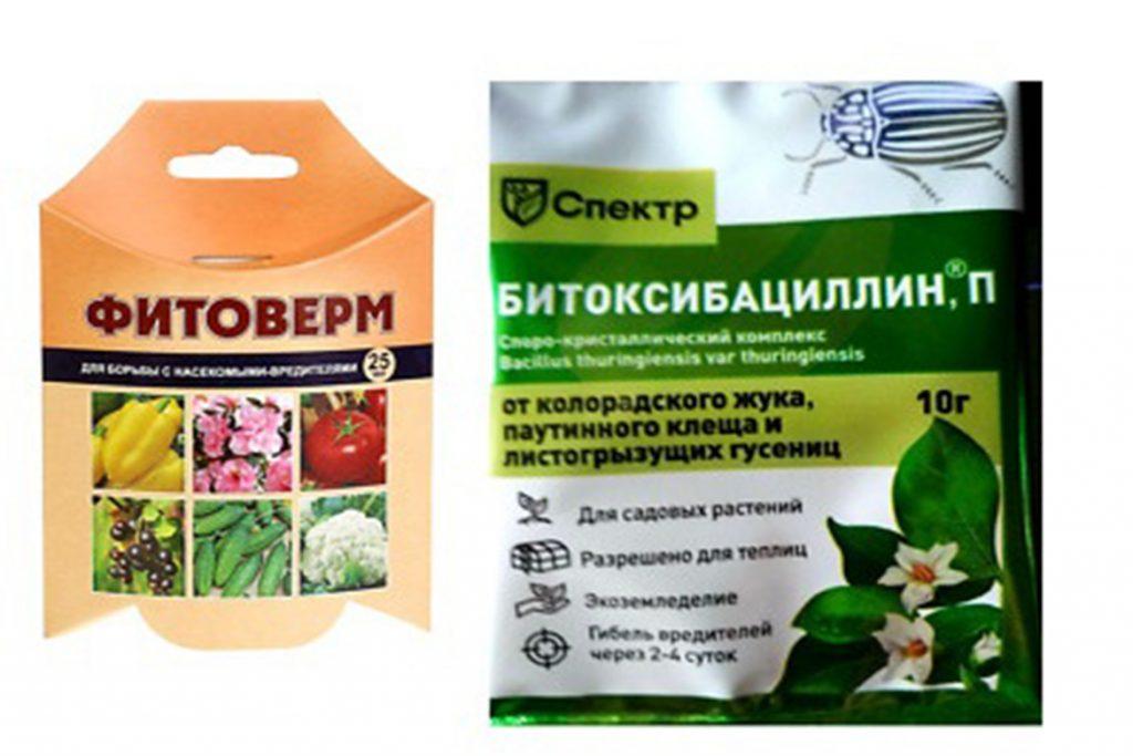 Как бороться с паутинным клещом на смородине – обработка, препараты, народные средства, отзывы садоводов и агрономов, биопрепараты