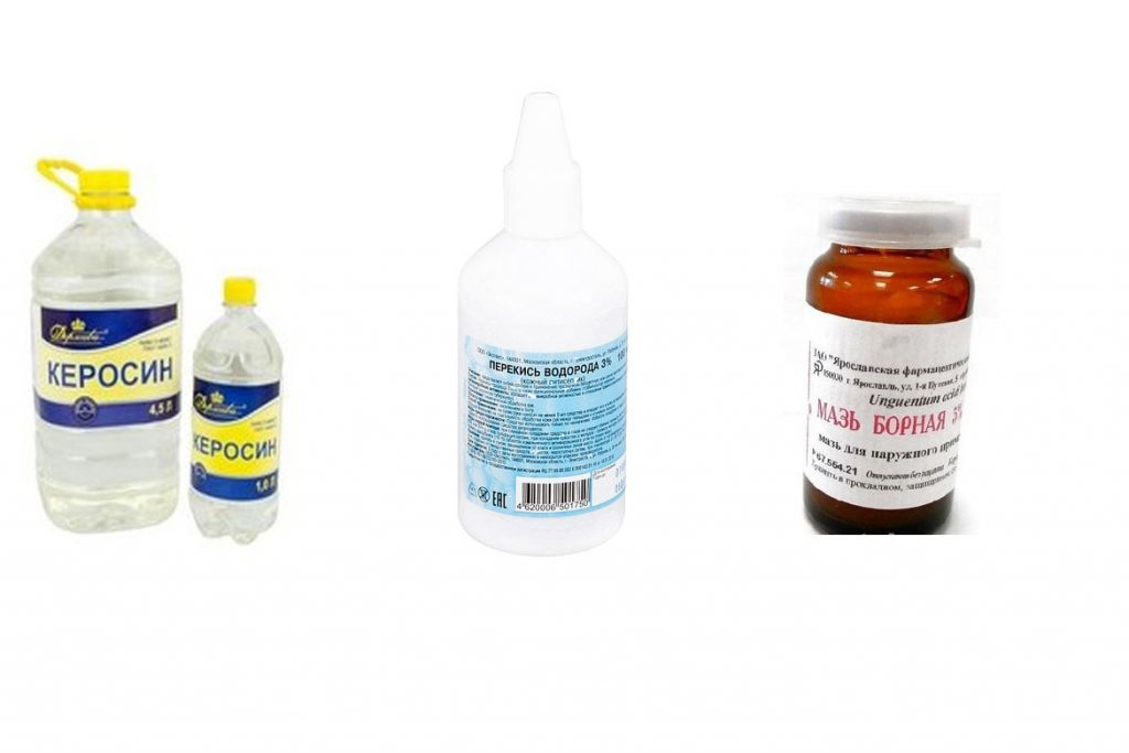 Лобковый педикулез: симптомы и лечение - народные средства