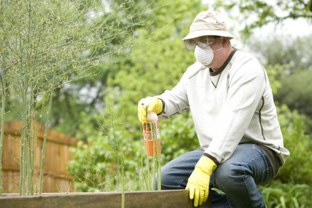 Обработка дачного участка от клещей – как бороться с клещом на даче, в саду, в огороде, в палисаднике, в лесу, правила обработки