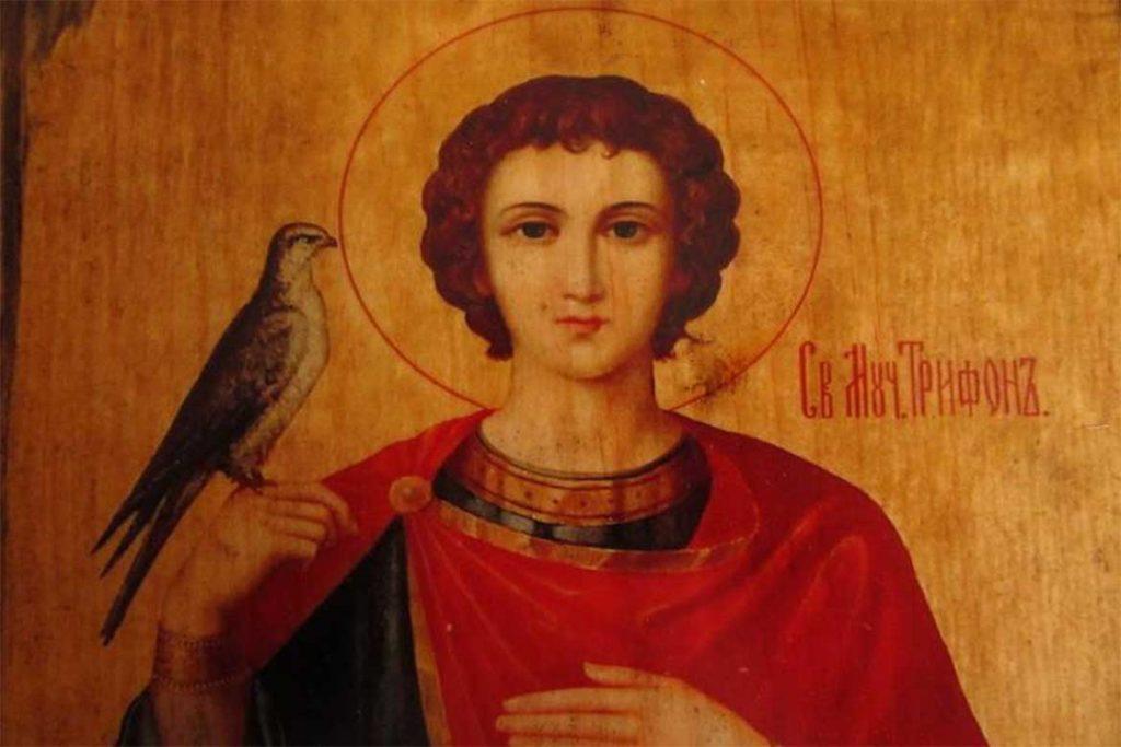 Молитва Святому Трифону от постельных клопов