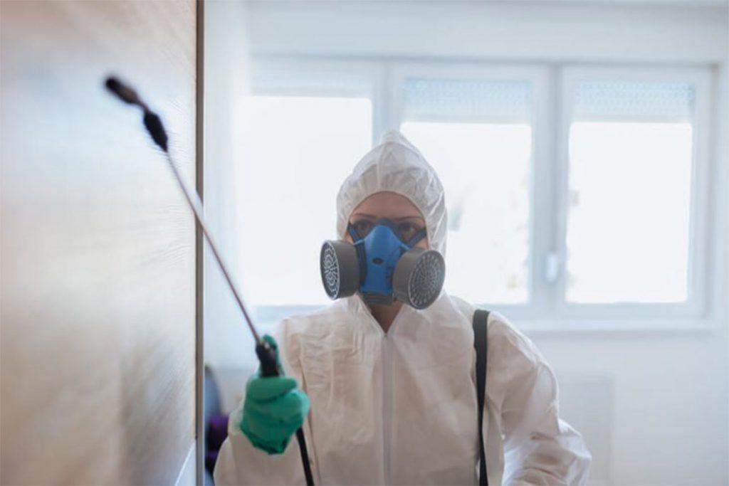 10 видов самой эффективной обработки (травли) тараканов в помещениях, горячий и холодные туман