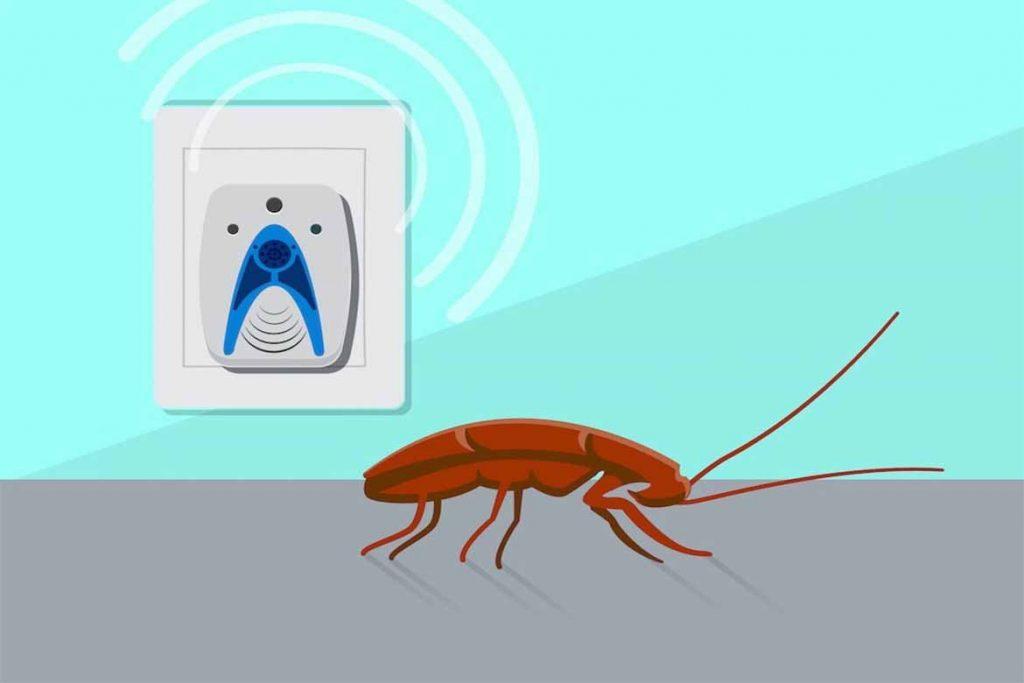40 способов избавиться от тараканов в квартире и частном доме раз и навсегда, ультразвуковые отпугиватели