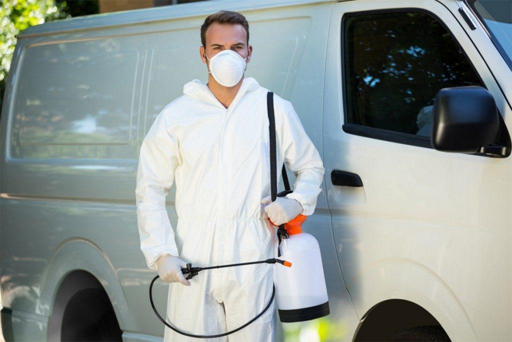 40 способов избавиться от тараканов в квартире и частном доме раз и навсегда   самые эффективные химические препараты