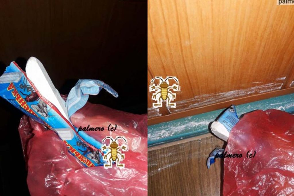 Как действует мелок Машенька и его аналоги от тараканов нанесение