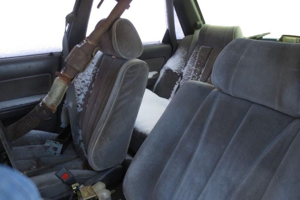 Что делать, если в машине завелись тараканы – как вывести и избавиться от них навсегда, вымораживание