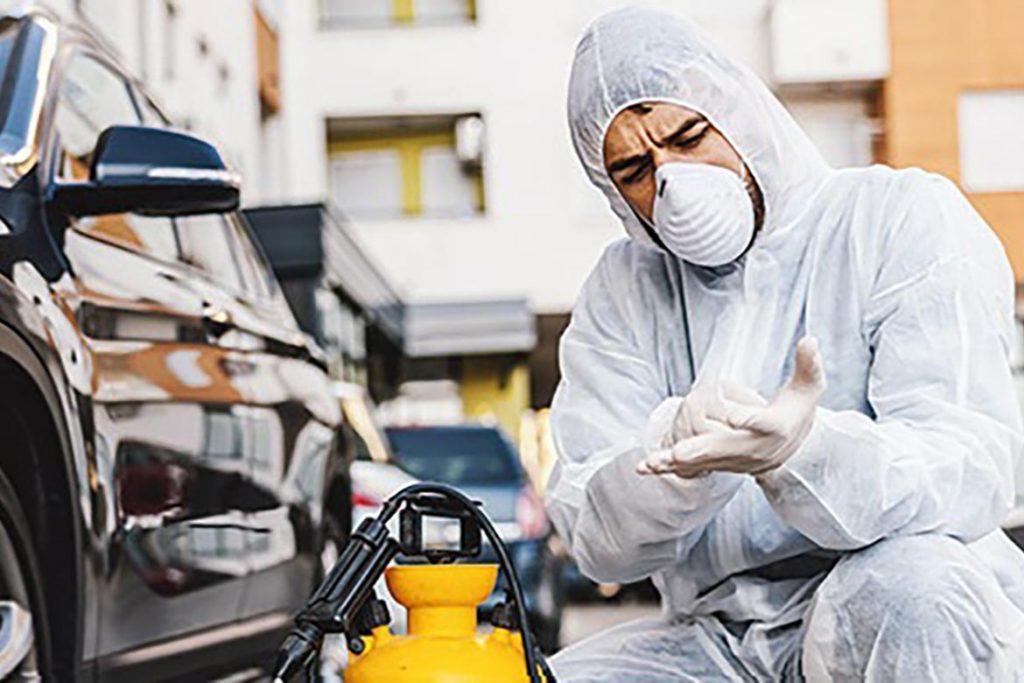 Что делать, если в машине завелись тараканы – как вывести и избавиться от них навсегда, профессиональная дезинсекция