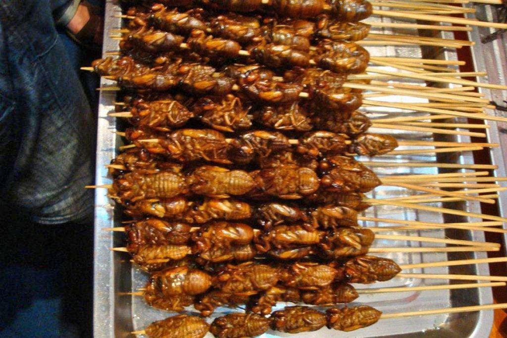 Если случайно съел таракана как готовить