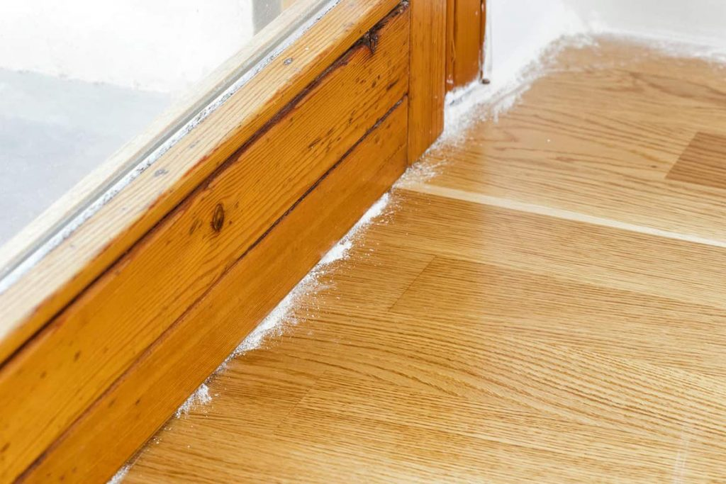 Тараканы в ванной комнате – откуда берутся, что делать и как эффективно избавиться от них, порошок