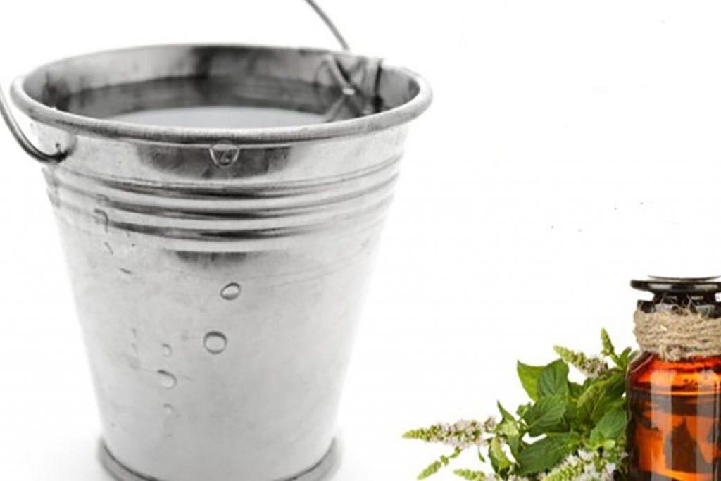 Лавровый лист, как доступное и дешевое средство против тараканов чего боятся тараканы, помогает ли использование лаврушки в квартире, отзывы. мытье полов с эфиром