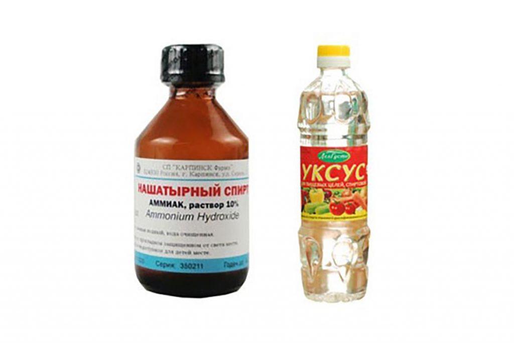 Нашатырный спирт от тараканов – нашатырь (аммиак), как доступное отпугивающее средство для использования в квартире или частном доме, отзывы, раствор с уксусом